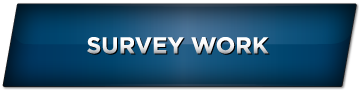 gallery-survey-work-active